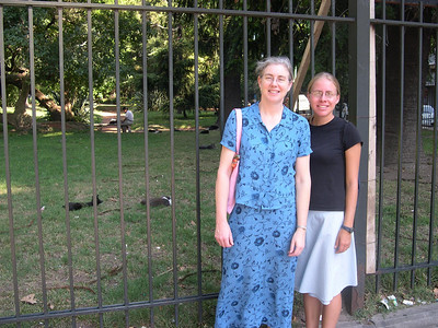 We arrive in Buenos Aires and visit a park full of cats.