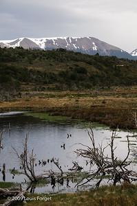 Isla Gable, Tierra del Fuego