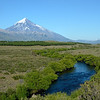 Rio Malleo, surrounded by willow trees, flows beneath Lanin Volcano peak.<br /> Wednesday January 16, 2013