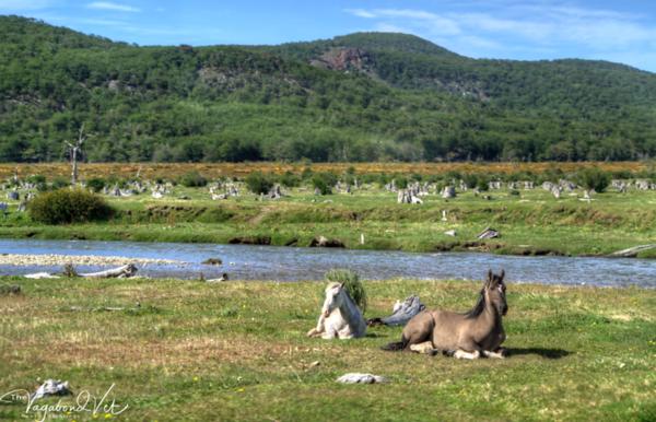 Tierra del Fuego Parque Nacional  Dec 2017