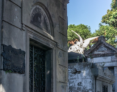 Recoleta is one of the places in Buenos Aires where I return almost every time I am there.  It is always beautiful and always diffent.