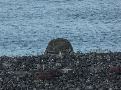 One of the toppled moai at Akahna.