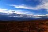 ARG- Los Cardones NP, Salta -IMG_3769sm