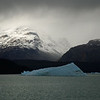 Iceberg in Lago Argentino.