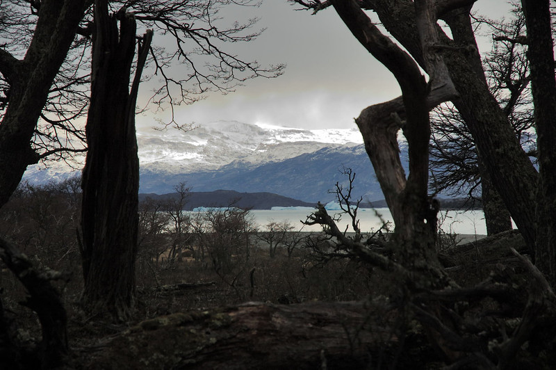 View of Lago Argentino.