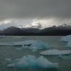 Glacier fragments in Lago Argentino.