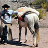 Gaucho on religious pilgrimage just north of Las Conchas, Argentina.