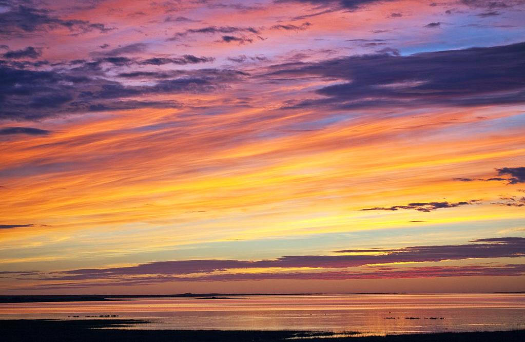 Sunrise in Bustamante.