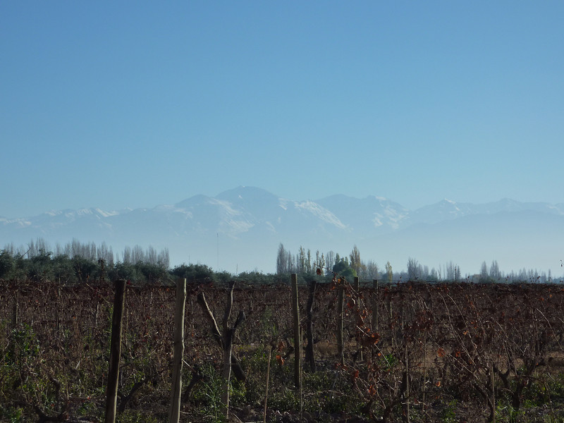 Beautiful Andes in the background.