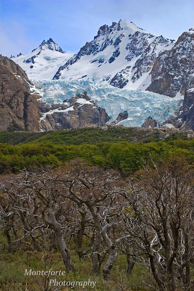 Glaciar Piedras Blancas, El Chalten Argentina
