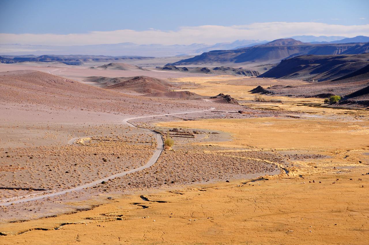 Salar de Pocitos - Antofagasta de la Sierra road