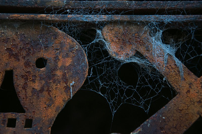 A cobweb stands out on a masuoleum Inside the Recoleta Cemetery in Buenos Aires.