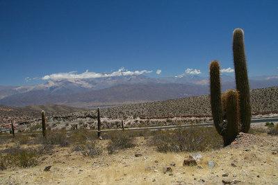Up on Nacional Ruta 40 to Cachi 054