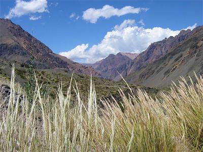 De Aconcagua Vallei, Argentinië.