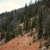US_Parks_Trip-5534tnd_resize