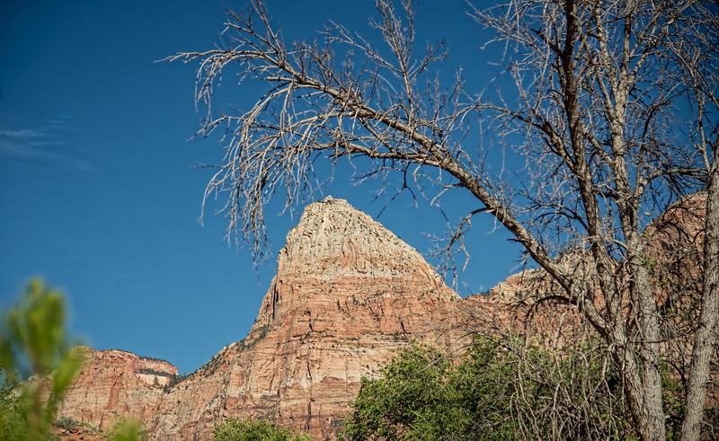 US_Parks_Trip-657tnid_resize