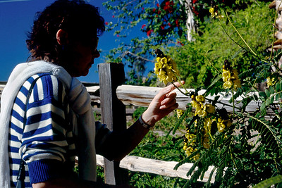 Rita examines some flowers, Phoenix Zoo, Arizona, 1987