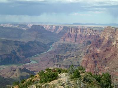 Arizona 2005