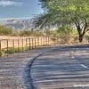 Along the Santa Cruz River Trail in Tucson