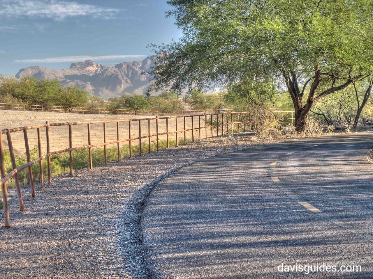 Along the Santa Cruz River Trail in Tucson