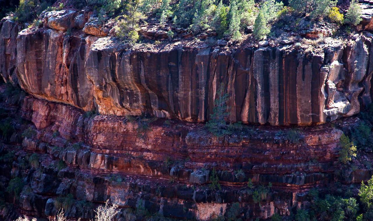 Just a few shots from Oak Canyon, near Sedona.