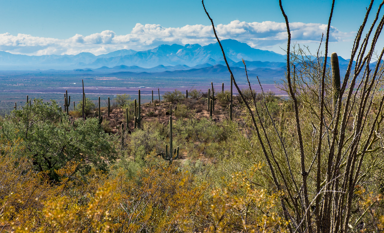 View from Arizona-Sonora Desert Museum, Tucson - December 2017