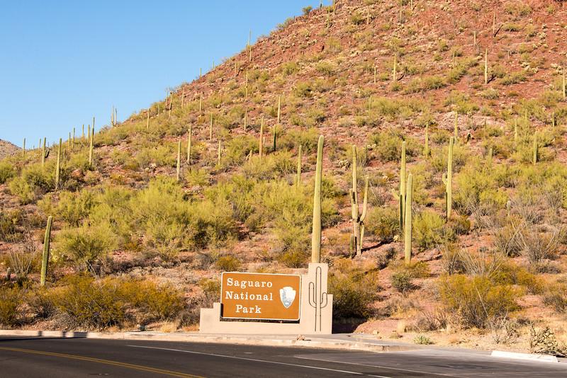 Entrance to Saguaro National Park (East) - December 2017