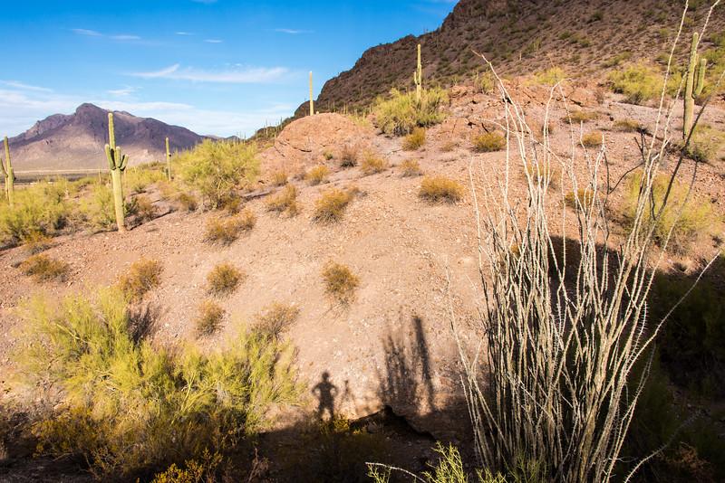 Picacho Peak State Park, AZ - December 2017