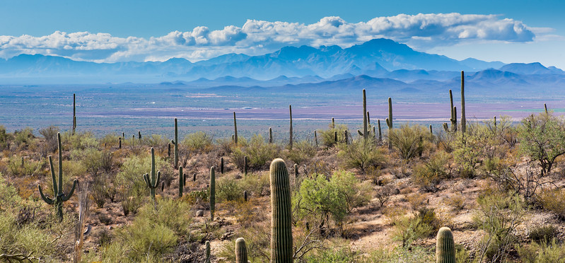 View from Arizona-Sonora Desert Museum, Tucson - December 2017