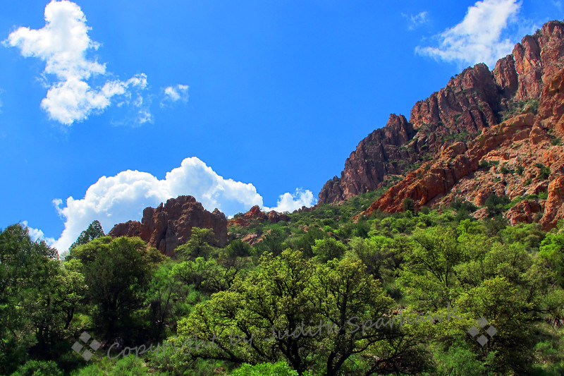 Cave Creek Canyon Walls