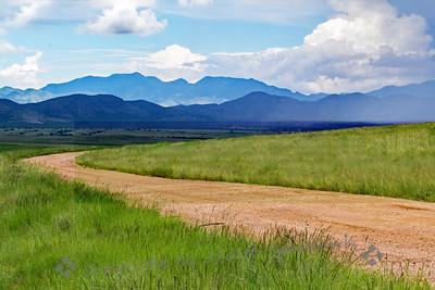 The Grasslands Road
