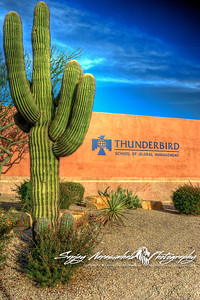 Thunderbird School of Global Management, Phoenix, Arizona 2012