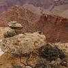 AR7III-Grand Canyon-00383