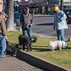 AR7III-Prescott-Downtown-Gatherings-00210