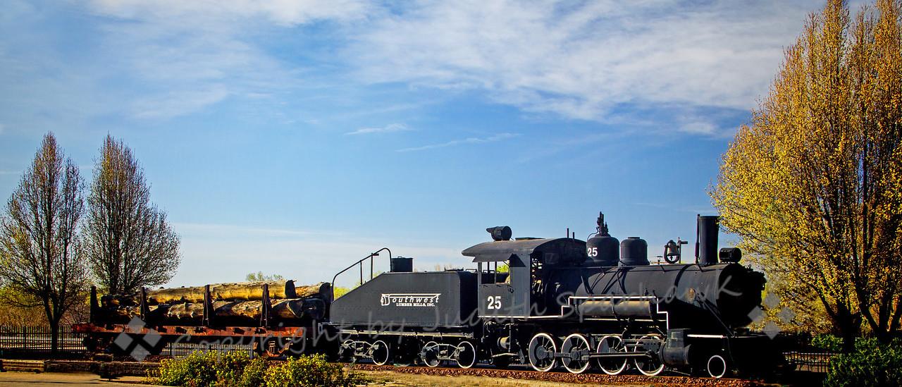 The Old Logging Train