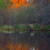 Reflection in Oak Creek
