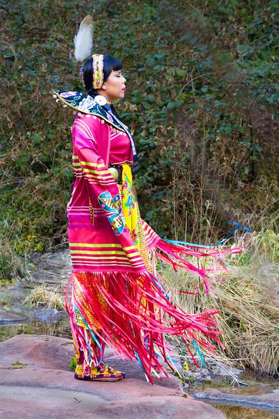 The Fancy Shawl Dancer