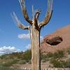 Arizona Day 3