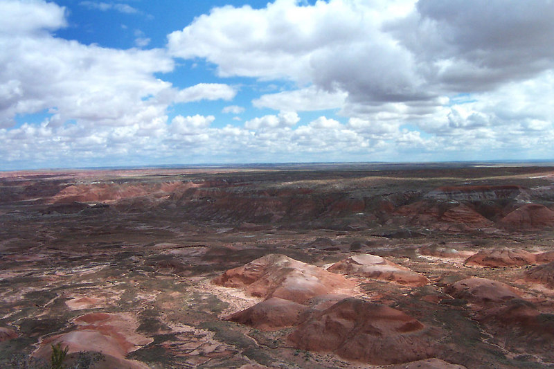 Looking north across part of the Painted Desert.