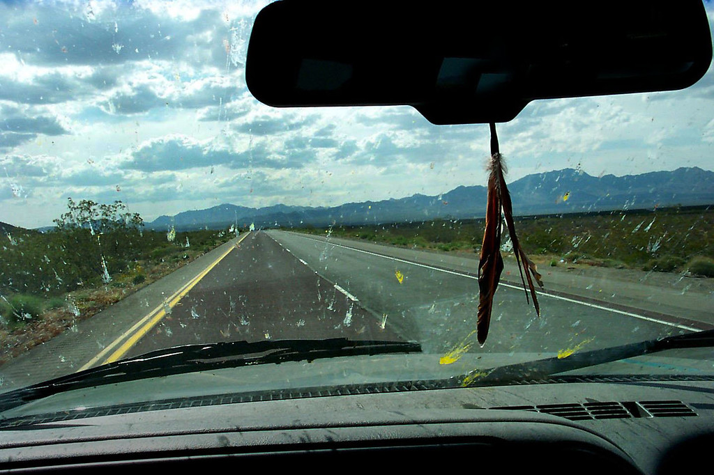 We picked up hundreds of bugs driving through Arizona, had to stop and clean off the windsheid. This was a great trip, we traveled 1,650 miles in four days. My favorite area was the Petrified Forest, like to go back there and spend a couple of days exploring the park.<br /> <br /> THE END