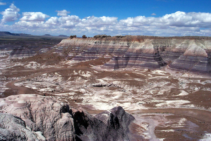 Still at Blue Mesa. It would have been great if we had time to go down into the canyon.