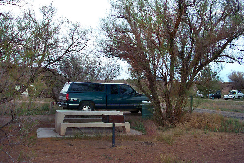Day #2, this is our campsite near Joseph City. We ate a quick breakfast and headed on our way to the Petrified Forest Nat'l Park.