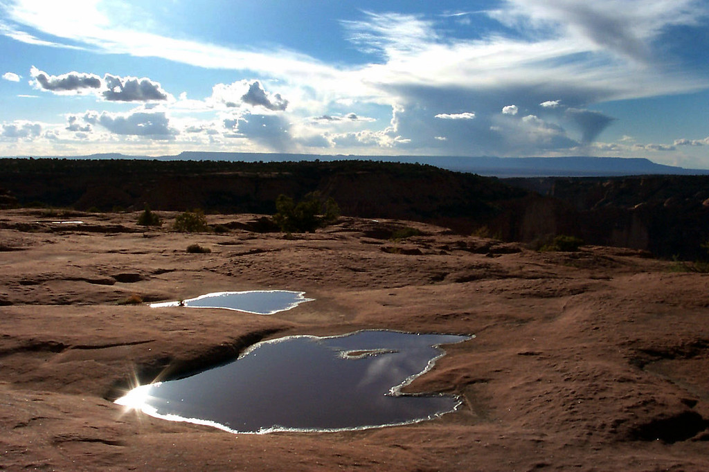 There were a lot of puddles on the mesa from yesterday's rain.