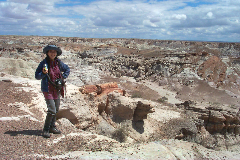 This is at Blue Mesa. The main attraction in this park is the petrified wood, but the park has an awesome geology.