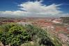 Painted Desert, AZ. 7 September 2010.