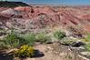 Painted Desert, AZ. 6 September 2010