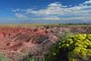 Painted Desert, AZ, I-40 in the background. 7 September, 2010.