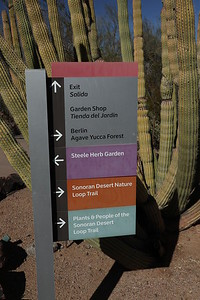 Upon entering the Phoenix Desert Botanical Gardens - pick your Trail and Garden
