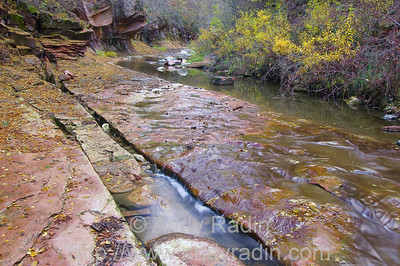 West Fork of Oak Creek, Sedona AZ