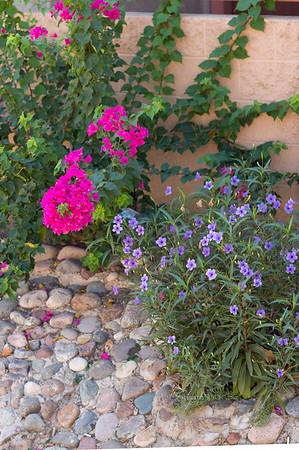 Pink Flowers stone Vanburen 0913 198